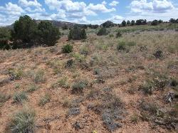 Upland Shallow Loam (Black sagebrush)